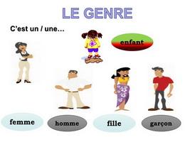 Danh từ giống cái đặc biệt trong tiếng Pháp - Học tiếng Pháp online