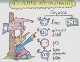 Tính từ chỉ định và đại từ chỉ định trong tiếng Pháp - Học tiếng Pháp online