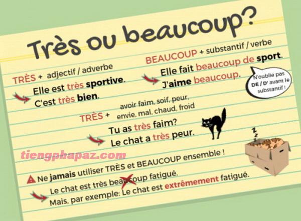 Cách sử dụng một số trạng từ đặc biệt và tính từ đặc biệt trong tiếng Pháp - Học tiếng Pháp online