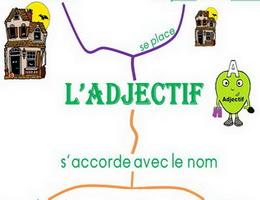 Cách sử dụng tính từ trong tiếng Pháp - Vị trí của tính từ - Học tiếng Pháp online