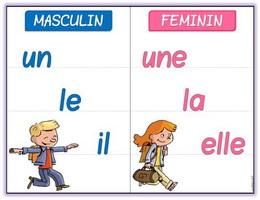 Mạo từ bất định trong tiếng Pháp - Học tiếng Pháp online