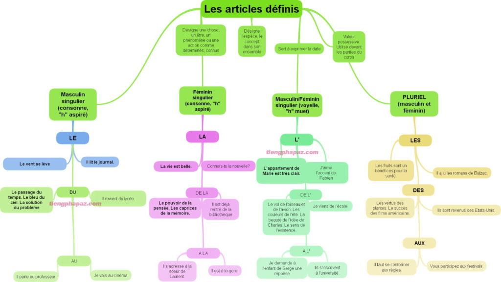 Mạo từ xác định le, la, les trong tiếng Pháp - Học tiếng Pháp online