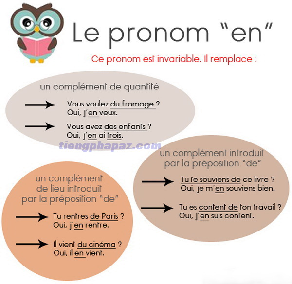 Đại từ en trong tiếng Pháp - Học tiếng Pháp online