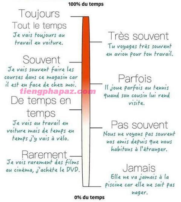 Mô tả các trạng từ chỉ tần xuất trong tiếng Pháp