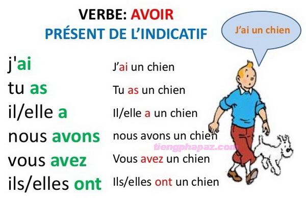 Cách sử dụng động từ avoir trong tiếng Pháp - Học tiếng Pháp online